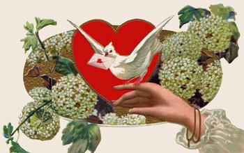 Valentinesday7