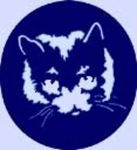 Bluecat1