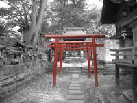 torii_gateway_